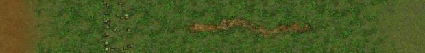 Rainforest Terrain Strip