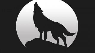 Wolfpack-manor, LLC.