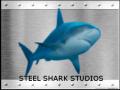 Steel Shark Studios