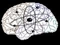 Intellectual Quantum productions