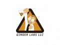 Ginger Labs LLC