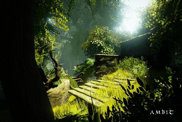 Ambit-Dark Forest