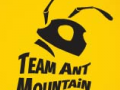 Team Ant Mountain
