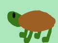 Box Turtle Enterprises