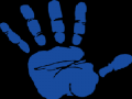 BlueHand Inc.