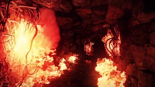 The Bard's Tale IV in-engine footage