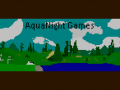 Aqua Night Games