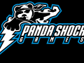 PandaShock Games