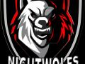 Nightwolfs