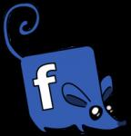 social rats