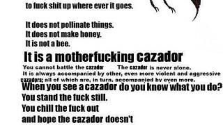 Introducing Cazador !