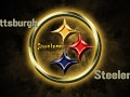 Pittsburgh Steelers Fan Group