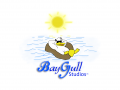 Baygull Studios LLC