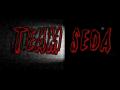 Team Seda