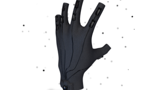 Rapture Gloves