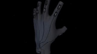 Rapture Glove