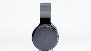 Ossic side view