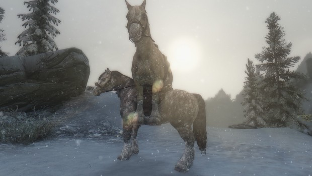 How Horse Breeds in Skyrim