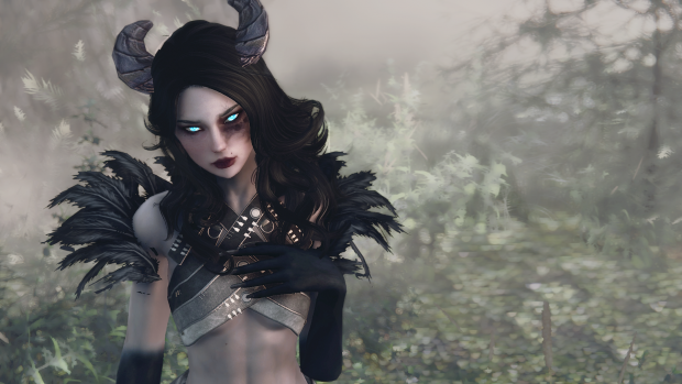 Skyrim new favourite custom follower mod image - illicitSoul