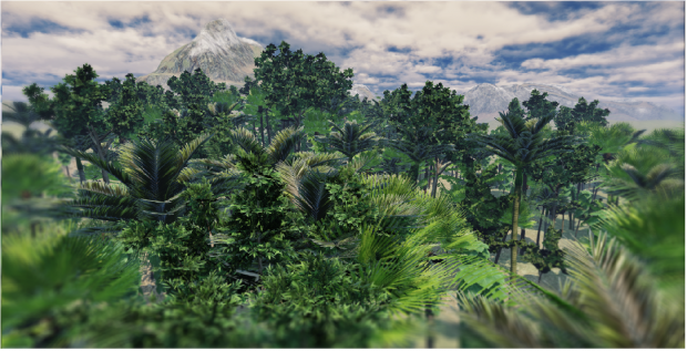 Tropical Forest (in progress)