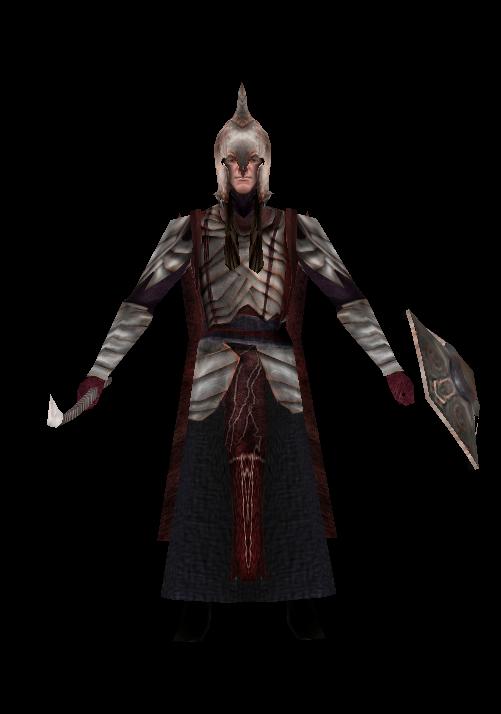 Rivendell warrior