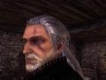 Geralt Beard Mod
