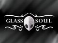 Hollow Knight: Glass Soul