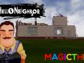 Magic Thief Unkown Neighbor