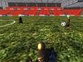 Calradia  football WorldCup