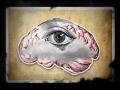 Amnesia: A Clouded Mind