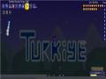 terraria world for name 1254yusuf