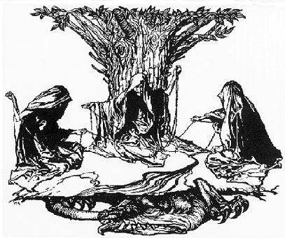 mythology the past and present In nordic mythology, yggdrasil (pronounced ig-druh-sill) their names translate roughly from old norse as past, present and future.