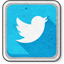 icon_small_twitter