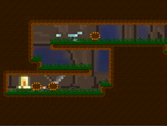 Cave Level