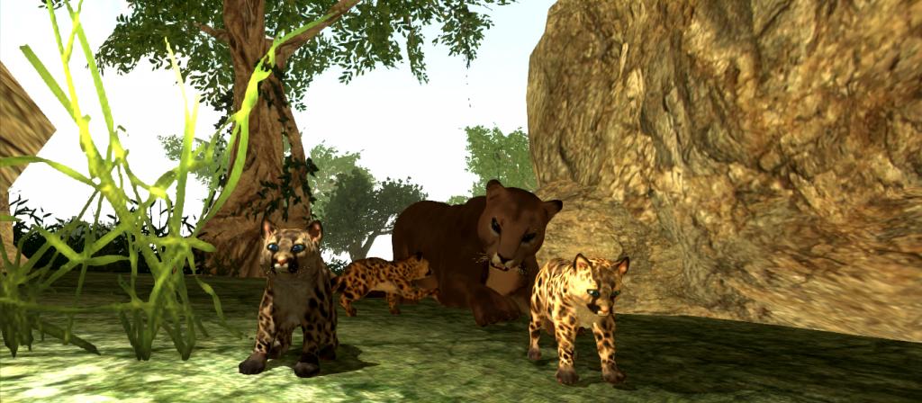 cub birth2