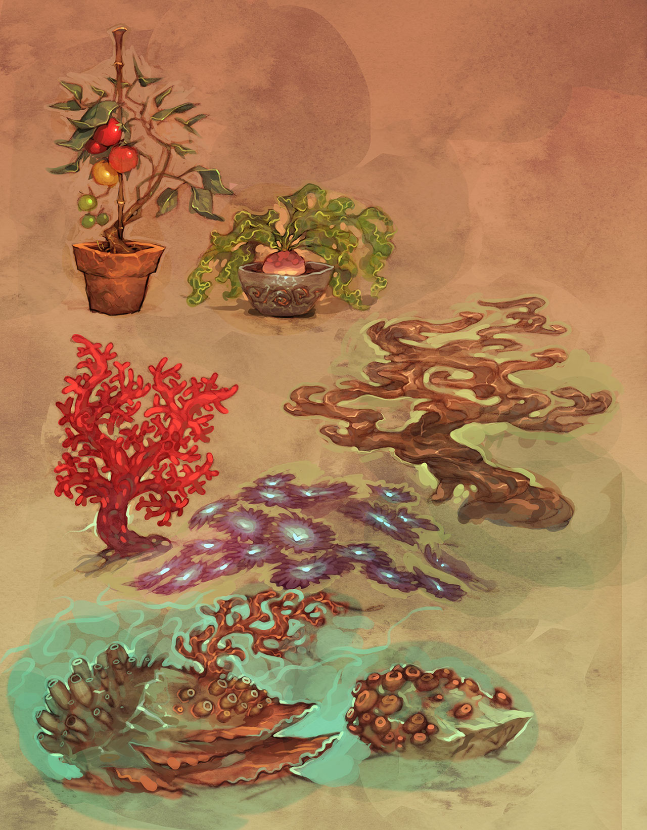 trudy_coral_plants