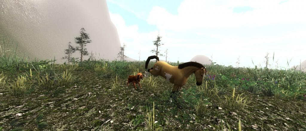 horse vs houndjp