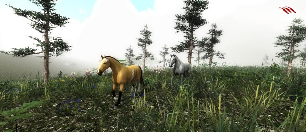 horsesjp