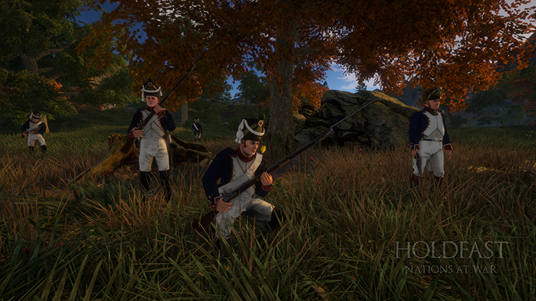 Holdfast NaW - French Line Infantry Crosshills