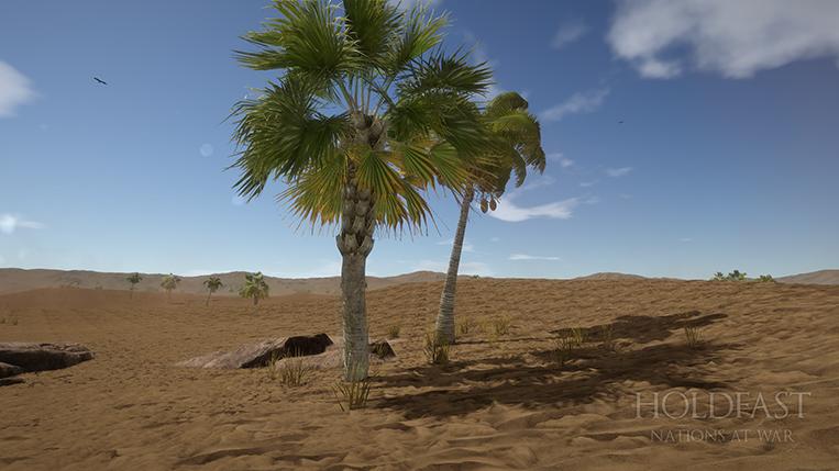 Holdfast NaW - Desert Plains