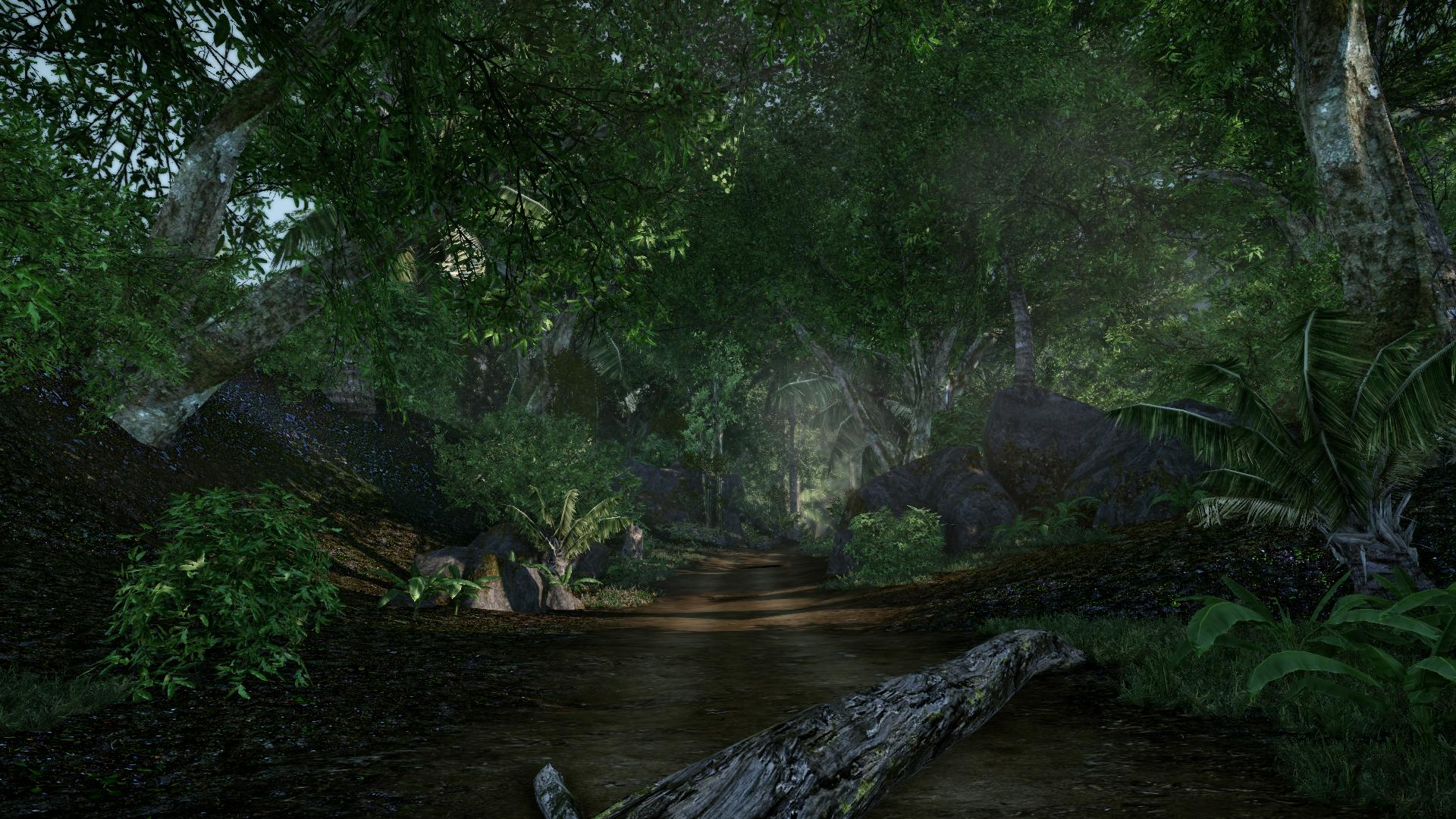 Jungle Road Image Jurassic Park Aftermath Indie Db