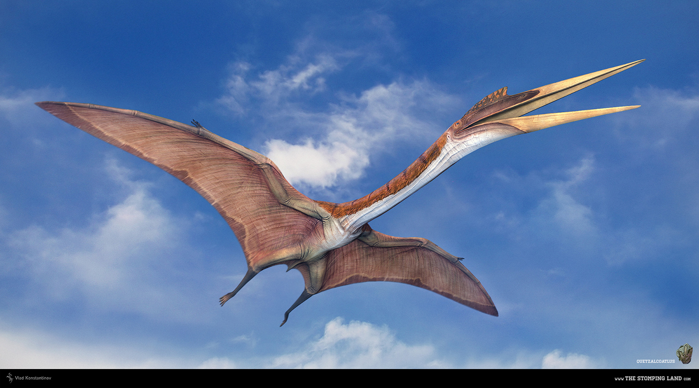 Quetzalcoatlus Render 2 image - The Stomping Land Game - Indie DB