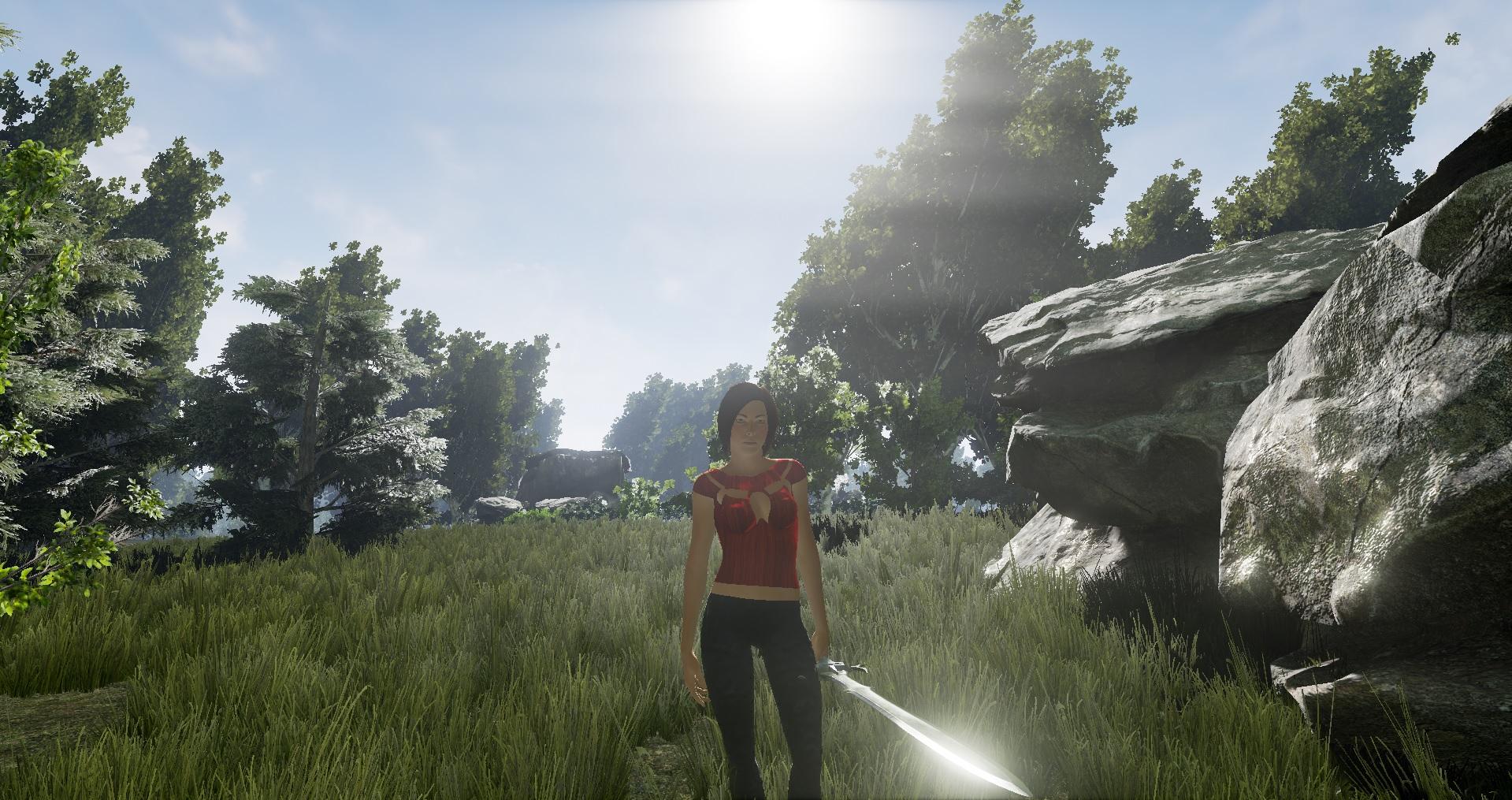 Wizard Online Environment