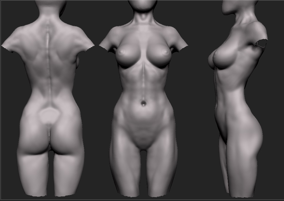 Female Anatomy Study image - 3D Artists Group - Indie DB