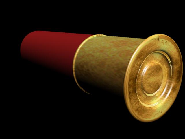 Shotgun shell art
