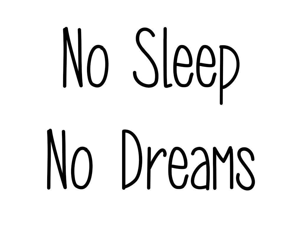 no sleep no dreams company