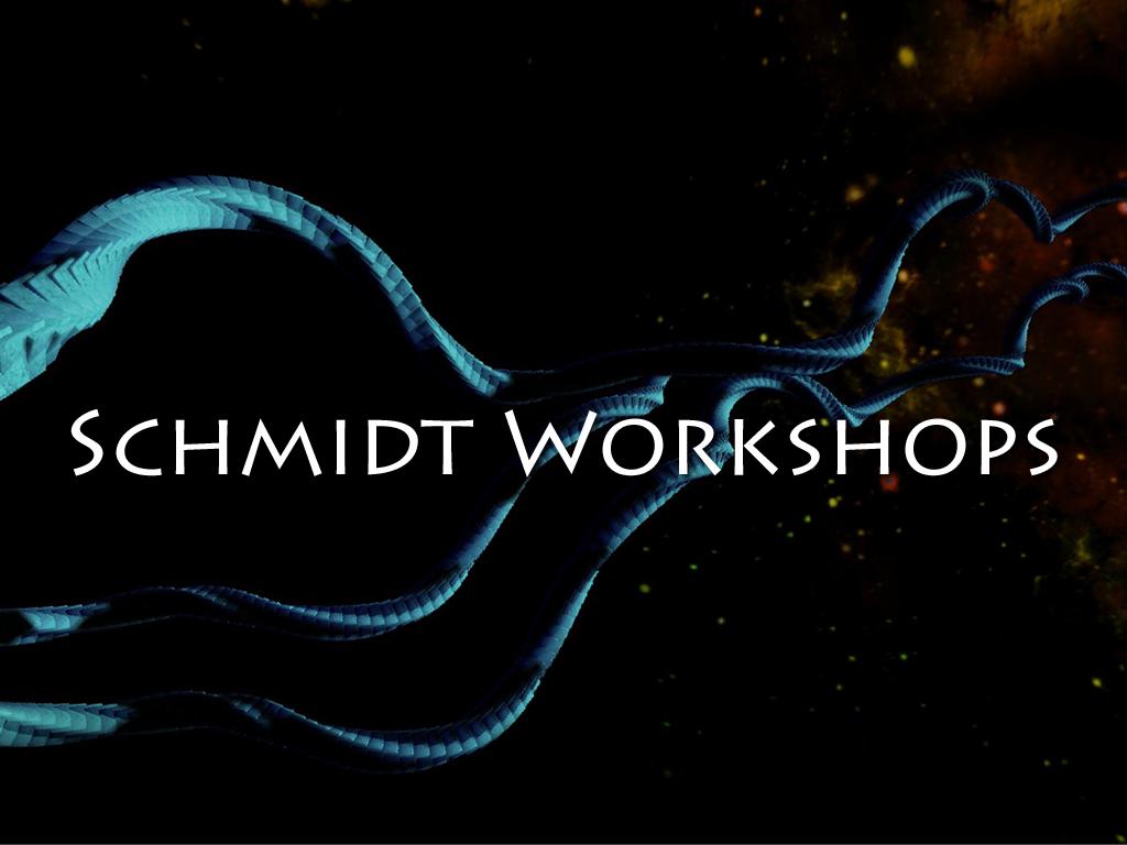Schmidt Workshops