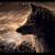 WolfX32