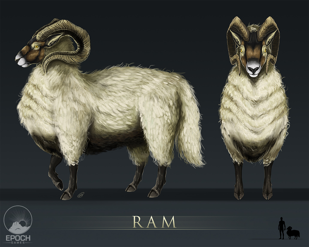 Northern Ram by Amanda Starlein