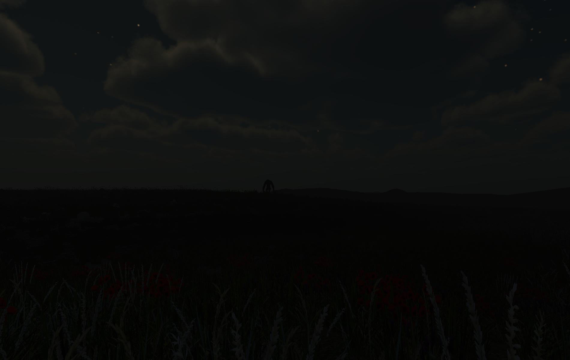Night view of creature in the di